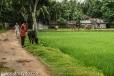 bangla1-23